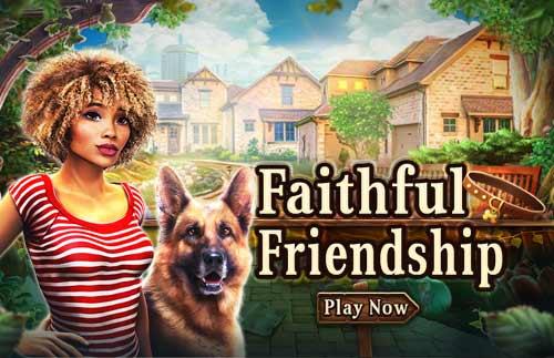 Image Faithful Friendship