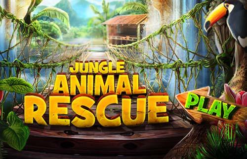 Image Jungle Animal Rescue