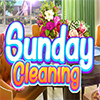 Sunday Cleaning